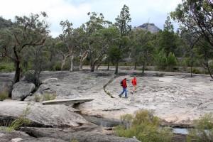 Girraween walking tracks (Bald Rock Creek)